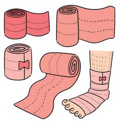Set of medical bandage vector