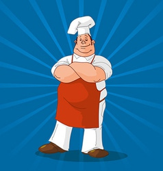 confident cook on blue background vector image