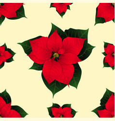 red poinsettia on ivory beige background vector image vector image