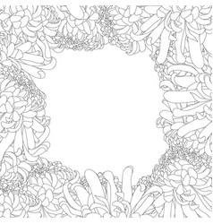 chrysanthemum outline flower border vector image