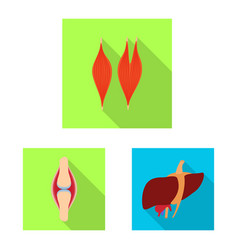 Design human and health icon collection vector