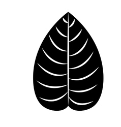 leaf plant isolated icon design vector image