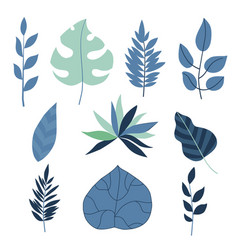 set of flat tropical leaves vector image