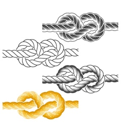 Rope knots in full-color textured and contour vector image vector image