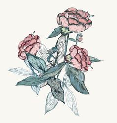 Botanical vintage peony in retro style vector
