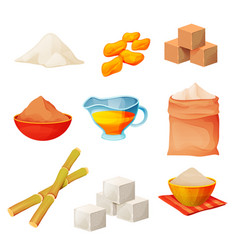 sugar products food cane cubes and powder vector image