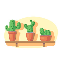 cacti on wooden shelf vector image vector image