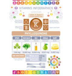 phylloquinone vitamin k rich food icons healthy vector image vector image