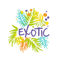 exotic logo with palm leaves summer vacation vector image