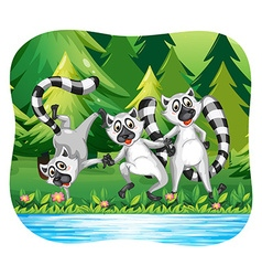Three lemurs being happy by the river vector
