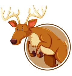 A deer on sticker banner vector