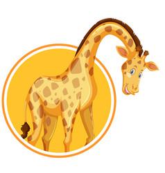 a giraffe sticker template vector image