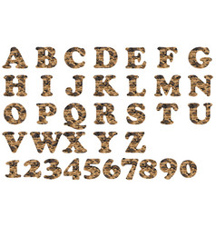 alphabet military brown vector image