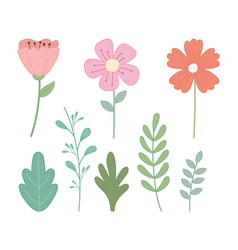 flowers leaves branch foliage nature icons set vector image
