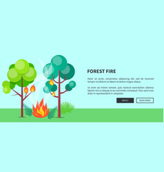 Forest fire web poster with inscription vector
