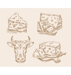 Hand drawn sketch set of cheese and cow vector