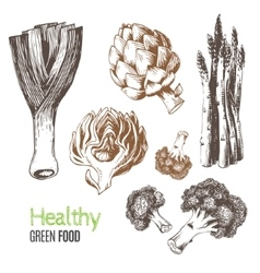 Hand-drawn vegetables vector