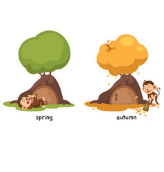 Opposite spring and autumn vector