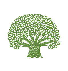 Tree symbol decorative oak with leaves vector