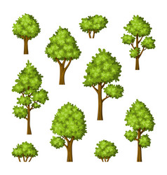 Collection of different trees and bushes vector