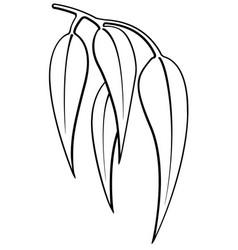 gum eucalyptus leaves outline silhouette vector image