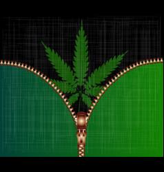 open zipper cannabis leaf vector image