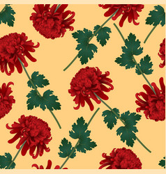red chrysanthemum flower on yellow background vector image