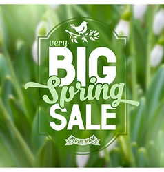 Spring sale poster vector