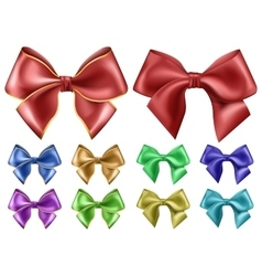 Set with bow on white background vector image vector image