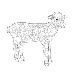 Sheep Coloring for adults vector image vector image
