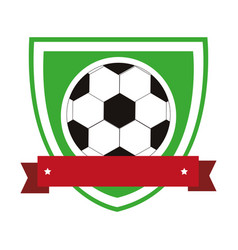 colorful shield with ribbon with soccer ball vector image vector image