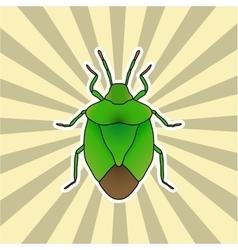 Insect sticker shield bug palomena prasina vector