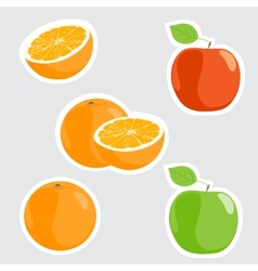 ripe fruits vector image vector image