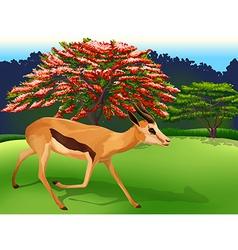 A deer vector