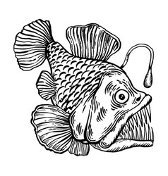 deepwater fish with lighter engraving vector image
