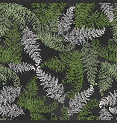 Fern herbs tropical forest plant leaves seamless vector