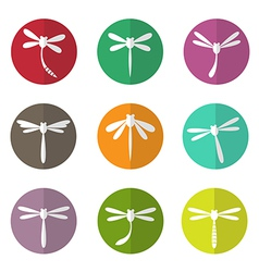 group dragonfly in circle vector image
