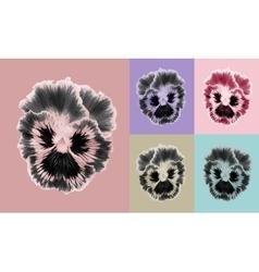 Pansies flower set vector