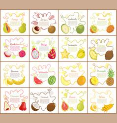 Papaya and citron kiwano set vector