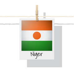 Photo of niger flag vector