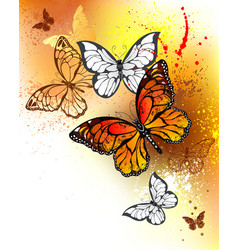 Summer butterflies monarchs vector