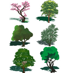 the set of trees in the vector image