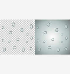 water droplets on a transparent background vector image
