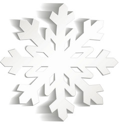 Snowflakes cut from paper Christmas icon Isolated vector image vector image