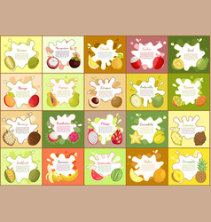 Durian and mangosteen pomelo vector
