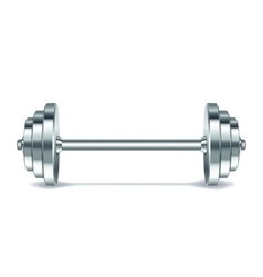 Metal realistic dumbbell vector image