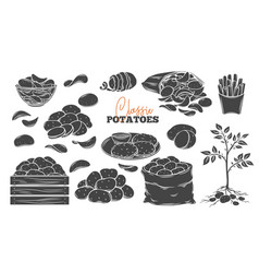 Potato products glyph icons set vector