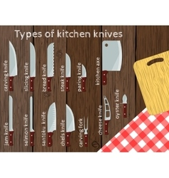 Types of kitchen knives vector image