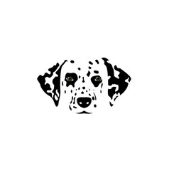 isolated dalmatian dog black and white head vector image vector image