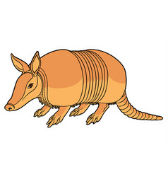 a cute armadillo vector image